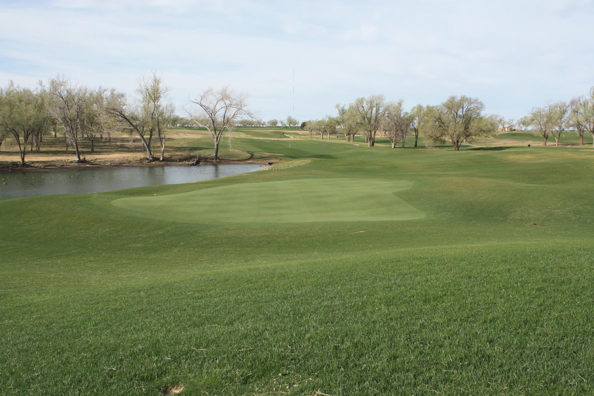 Mustang Golf Course 3
